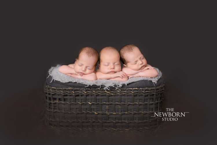 australia brisbane sydney multiple newborn triplet photographer