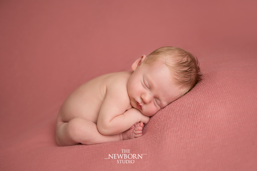 brisbane photographer newborn