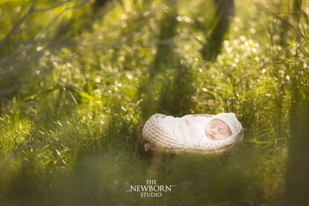 brisbane premier outdoor newborn photographer