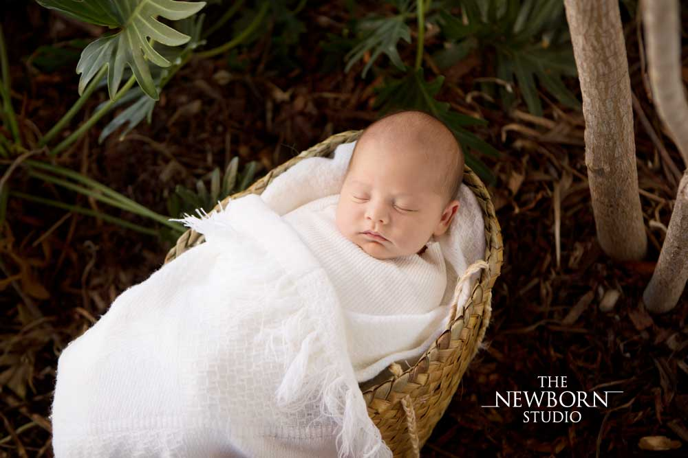 brisbane northside outdoor newborn photographer