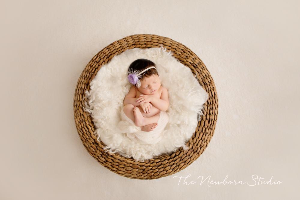 baby photography newborn