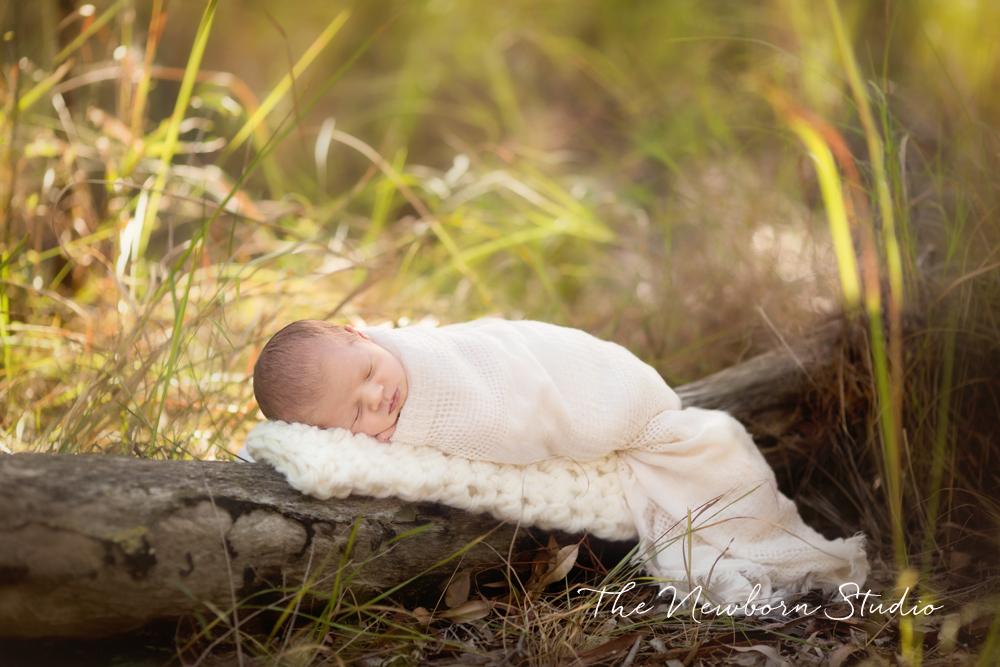 newborn baby outdoors on log brisbane