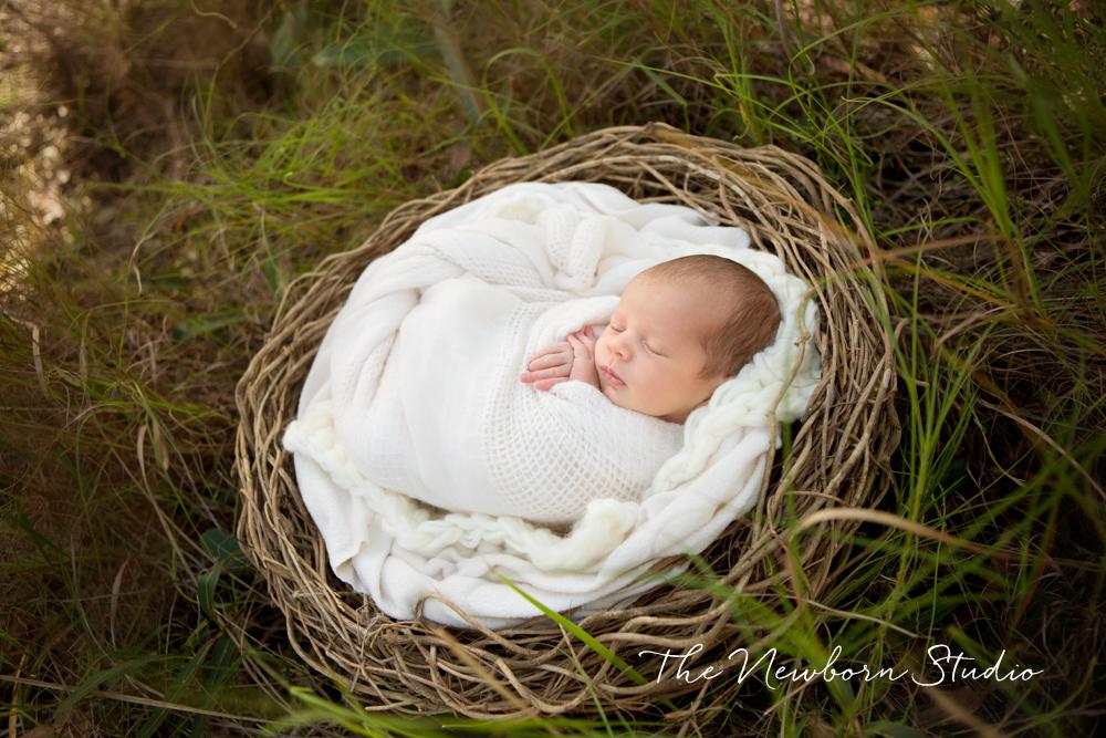 newborn outdoors basket organic