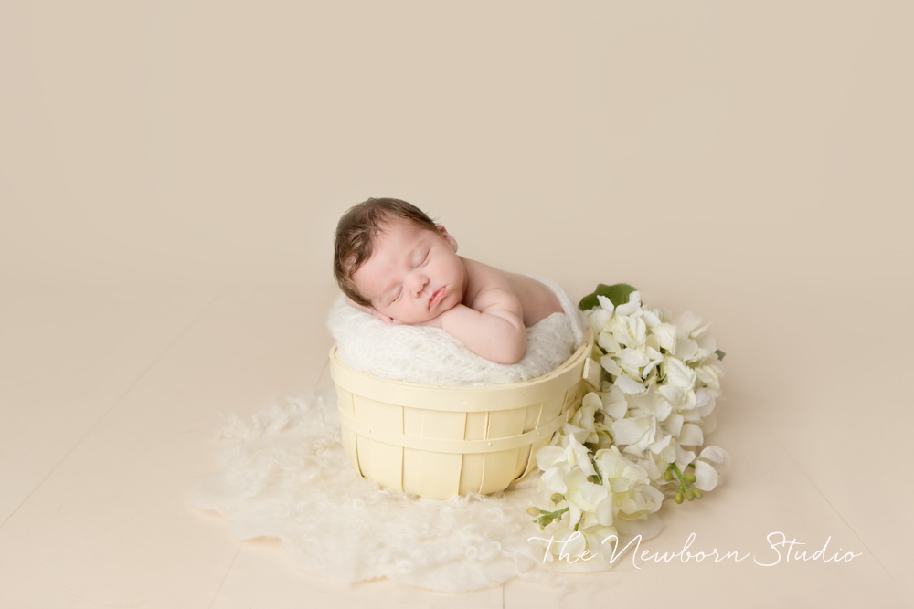 baby girl studio white cream flowers
