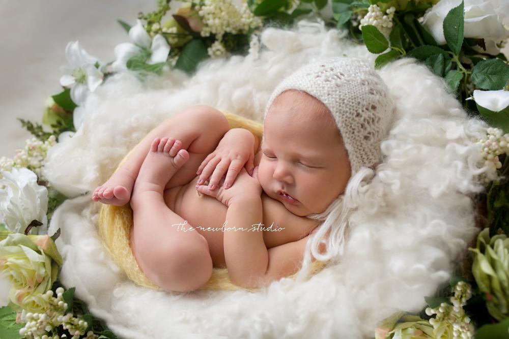 brisbane newborn photos