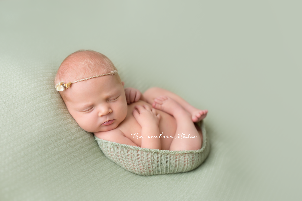 newborn baby girl studio photographer