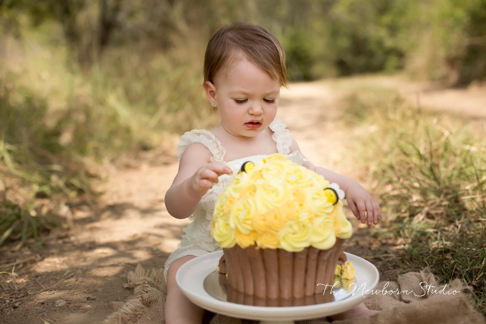 bee cake yellow honeybee outdoors