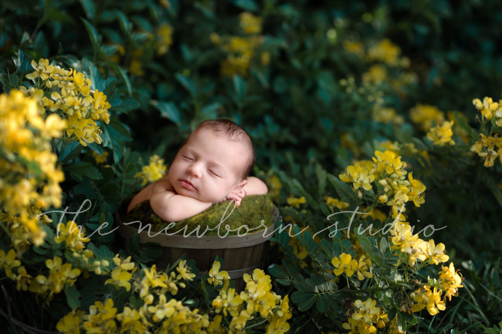 newborn baby digital backdrop outdoors floral