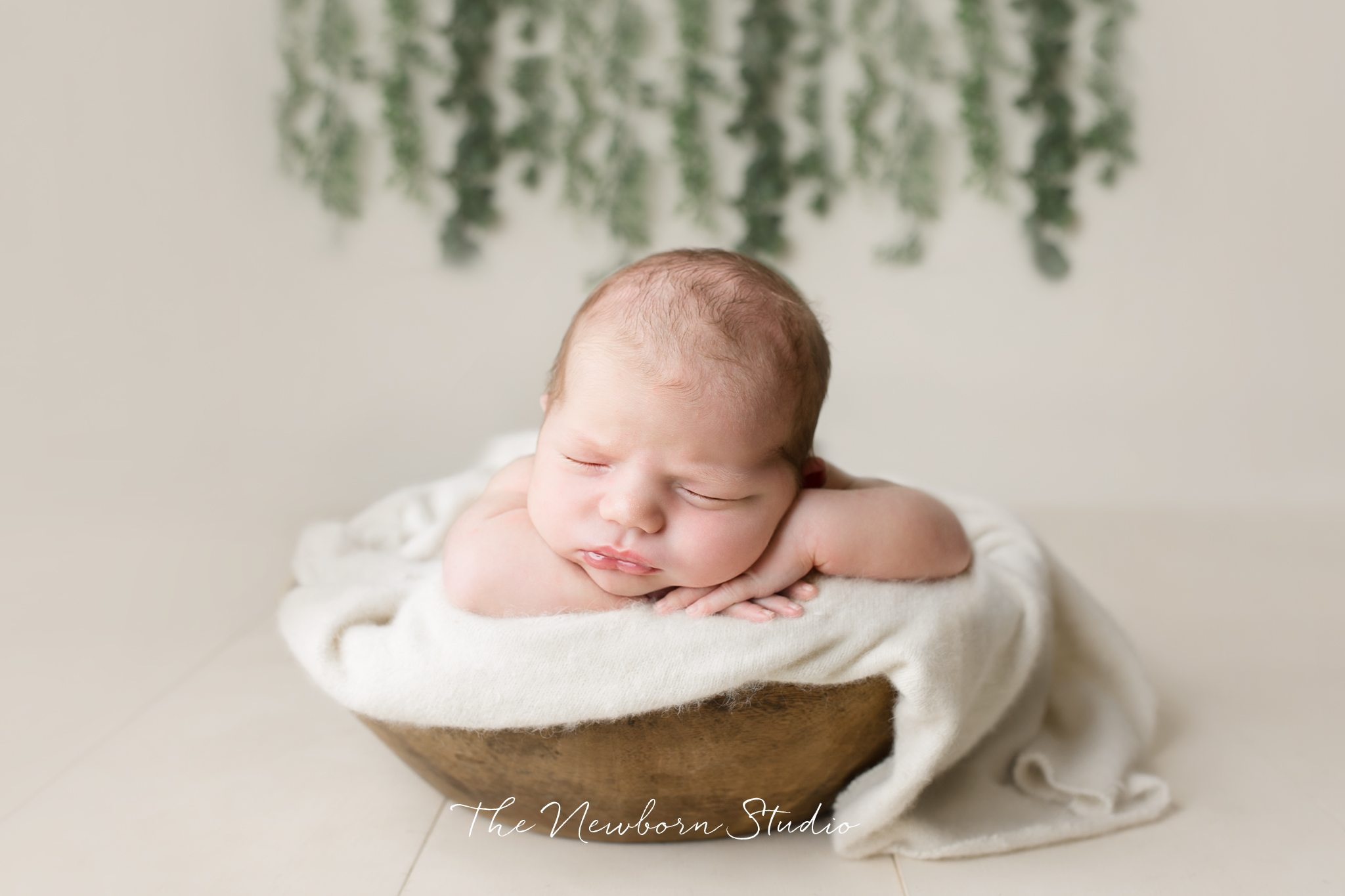 Newborn Photography North Brisbane