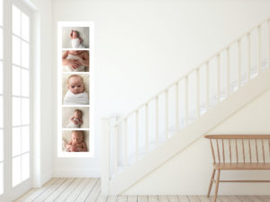 acrylic newborn brisbane photographer
