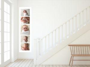 acrylic newborn brisbane photographer