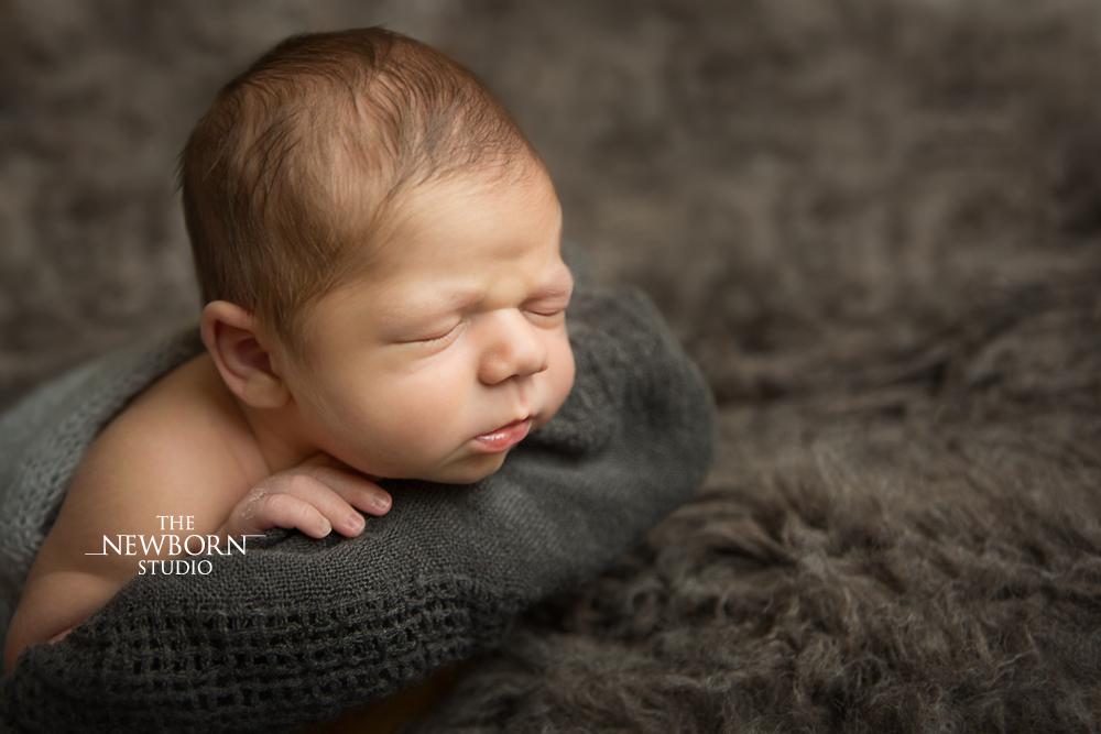 newborn baby photos brisbane