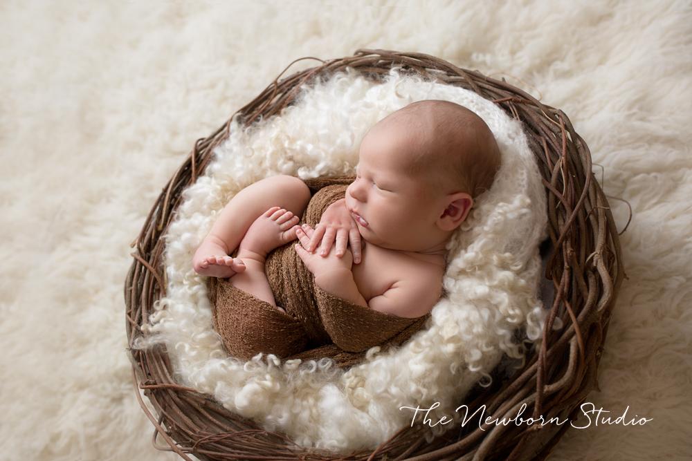 baby boy brown cream nest